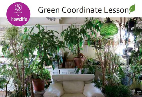2016 GREEN LESSONのご案内